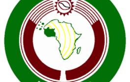 Guinea Bissau: Junta Presents Ecowas With a Fait Accompli