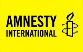 Amnesty accuses UN council of