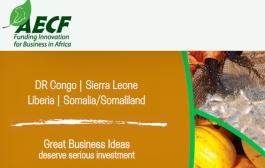 Sierra Leone,Liberia, DR Congo,and Somalia/Somaliland Business Competition
