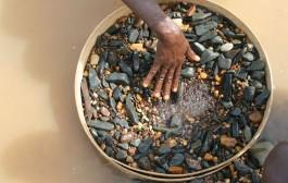 In Sierra Leone,ten Mining companies suspended.