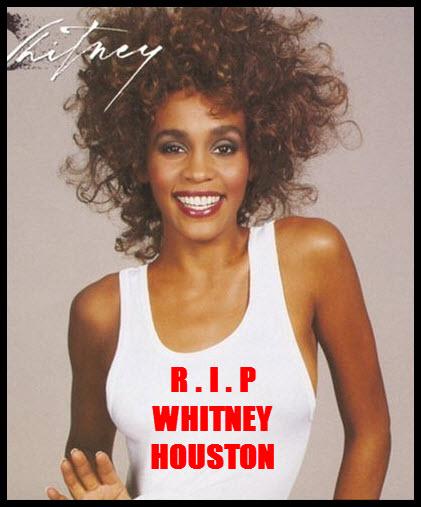 Whitney Houston's death stuns music world.